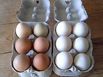 Hen and duck eggs available for your breakfast