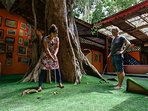 With minigolf around the ancient Tree on your patio
