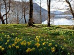 Cumbria in the spring