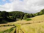 Many fields and woods to be explored in the Owlpen valley