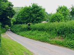 Summerfield is on a country lane - 10 cars on a busy day!