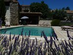 In walled 5x10 private pool & pool house with BQ , sun beds dinning table.