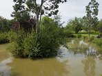 Why not try a spot of fishing at our onsite, large private pond?
