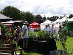 Our farmers market is on the 2nd Sunday of the month