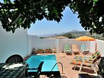 Pool and fig tree covered terrace