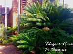 Elegant Guesthouse is a 4 star.Guesthouse,situated in town with 8  rooms.