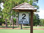 Perched in Pinehurst is located on the second hole of Course Five.