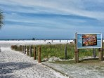 Siesta Beach is welcoming you to its shores