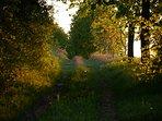 Wanderwed von Alt- nach Neu- Lutterow
