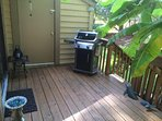 Back porch / grill