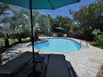 Pool Loungers and Umbrellas