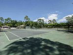 Tennis, Basketball, Soccer, & Volleyball facilities available to Briarwood guests