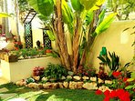 The Tropical Garden area, leading to beautiful Rockery Garden!