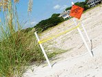 Federally protected loggerhead nesting site