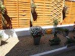 Own Patio Garden