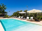 40 square meters swimming pool with sun beds
