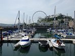 Torquay Harbour and the Riviera Wheel.