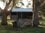 Stable in front paddock