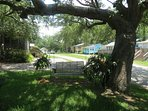 Relax and swing under the ancient live oak tree...