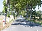 route platane accès les bourdoncles