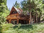 Hidden Pines Lodge nestled in the trees