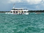 dolphin tours close by