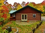 Fall at the Cabin!