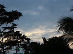 Evening sky with trees silhouetted above the pool. Great photo opportunities at the Emerald Estate.