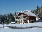 Full winter view