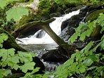 Arthog Falls
