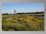 Kiawah's natural beauty is spectacular! Post card vistas everywhere you turn.
