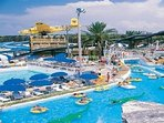 Take the kids to The Big Kahuna water park.