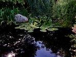 ... mit Seerosen und Goldfischen. // ... with water lilies and gold fish.