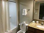 Bathroom in the master bedroom
