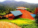 This is the Panoramic view of your Vegetarian-families'- Home- Coffee Estate we are , what we look.