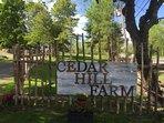 Cedar Hill Farm Bed & Breakfast - One bedroom loft barn apartment