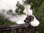 Iconic Puffing Billy five minute walk down the street.