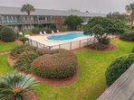 Yard,Fence,Hedge,Pool,Water