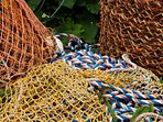 Brightly coloured netting and a crabpot.