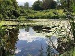 Lakes to walk around or fish