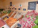 Légumes Bio en vente directe chez notre fils Guillaume mardi et vendredi 16h à 19h