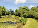 Garden of Pembrokeshire holiday cottage near the coast - pet welcome