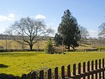 Lovely views over rolling lawns and surrounding countryside from the cottage