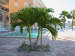 Pool Area Invites You to Relax at Sandy Shores on Madeira Beach