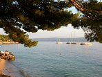 Pebble beach Slavinj unter the shade of ancient pine and tamarisk trees