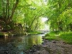 Domaine au coeur d'un site Natura 2000 (rivière, cascade, plan d'eau et forêt)
