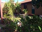 Lush and Private Backyard