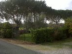 spazio verde recintato di proprietà