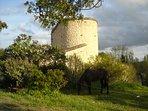 Vue de la tour, avec Désign au premier plan.