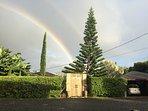 Balinese entryway to the villa with a beautiful tropical garden!